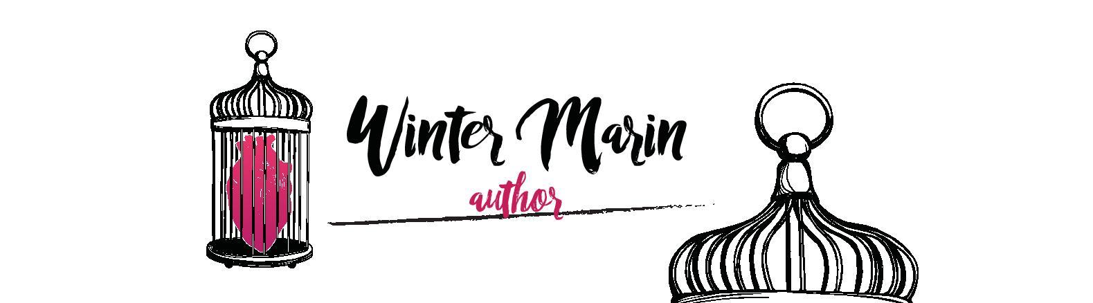 VW Marin Website Banner
